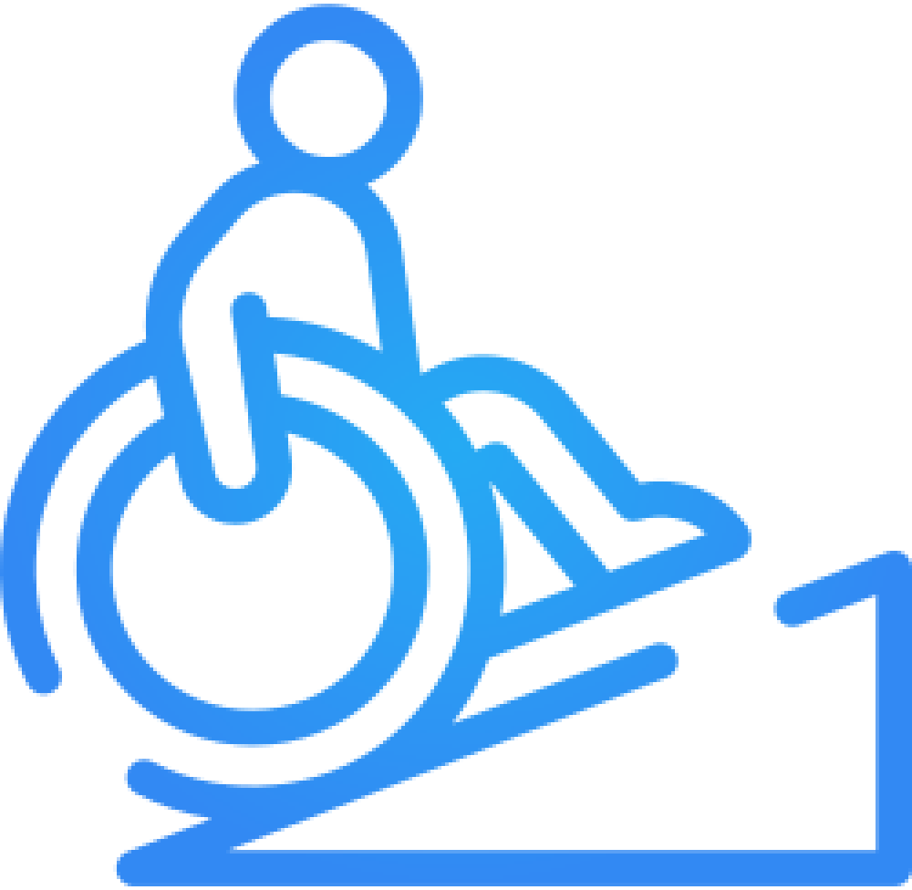 Determinarea dezabilitatii